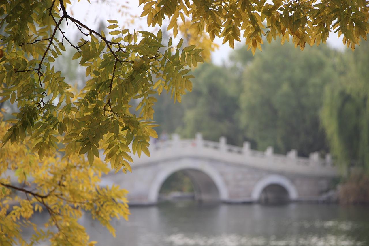 26 Ekim – 1 Kasım 2020 Haftalık Burç Yorumları
